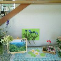 6月の大江駅