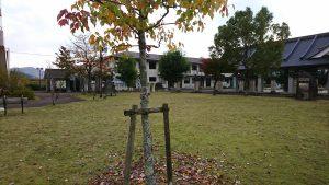 鬼瓦公園も落ち葉が舞い始めました。